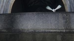 vlcsnap-2014-03-23-19h49m04s21